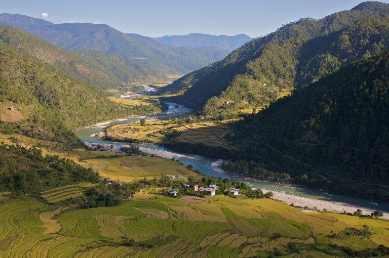 Bhutan Reisfelder