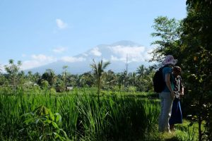 Indonesien Lombok Landschaft Wanderung