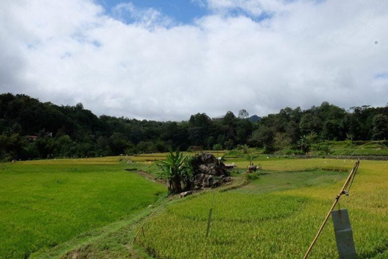 Indonesien - Tana Toraja