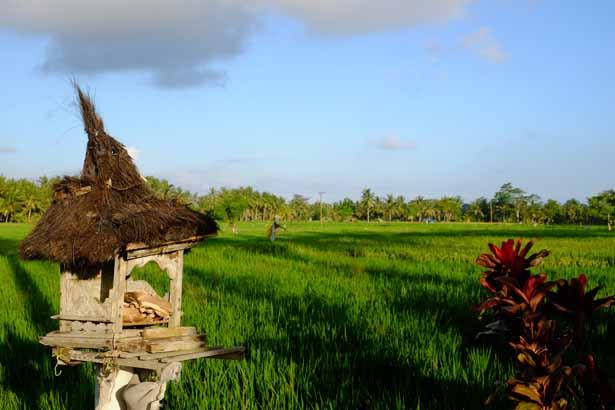 Indonesien - Ubud auf Bali