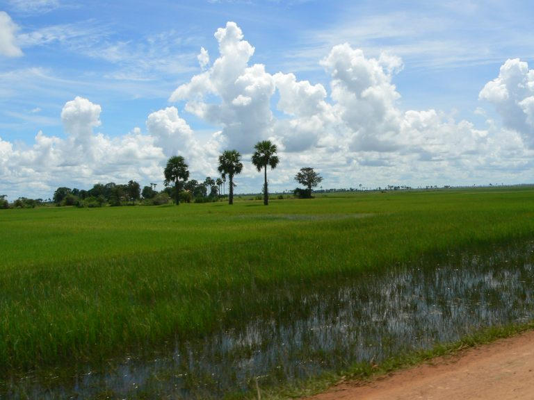 Kambodscha Landschaft