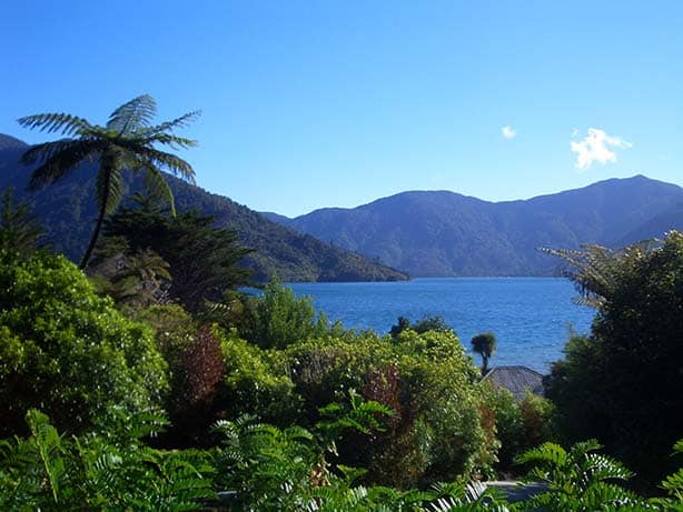 Neuseeland - marlborough sounds
