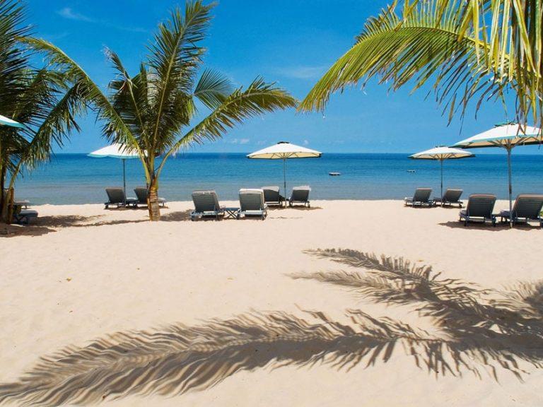 Vietnam - Phu Quoc - Strand - Palmen