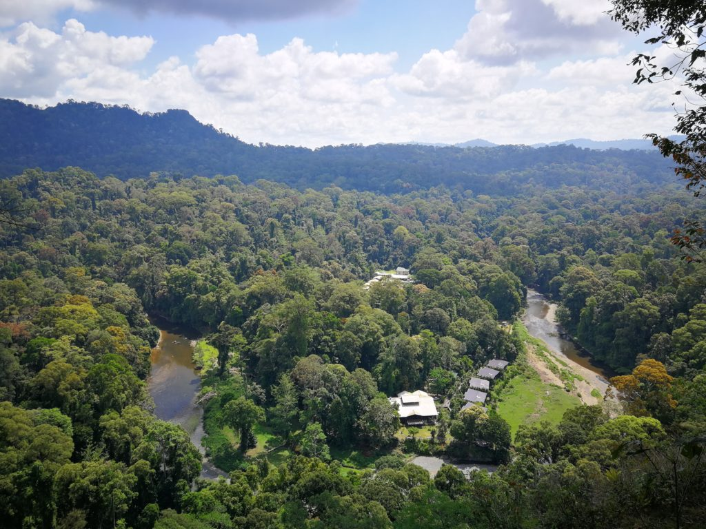Malaysia Borneo Danum Valley Aussicht