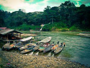 Malaysia Taman Negara - Nationalpark