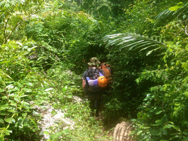 Vietnam Phong Nha Dschungel