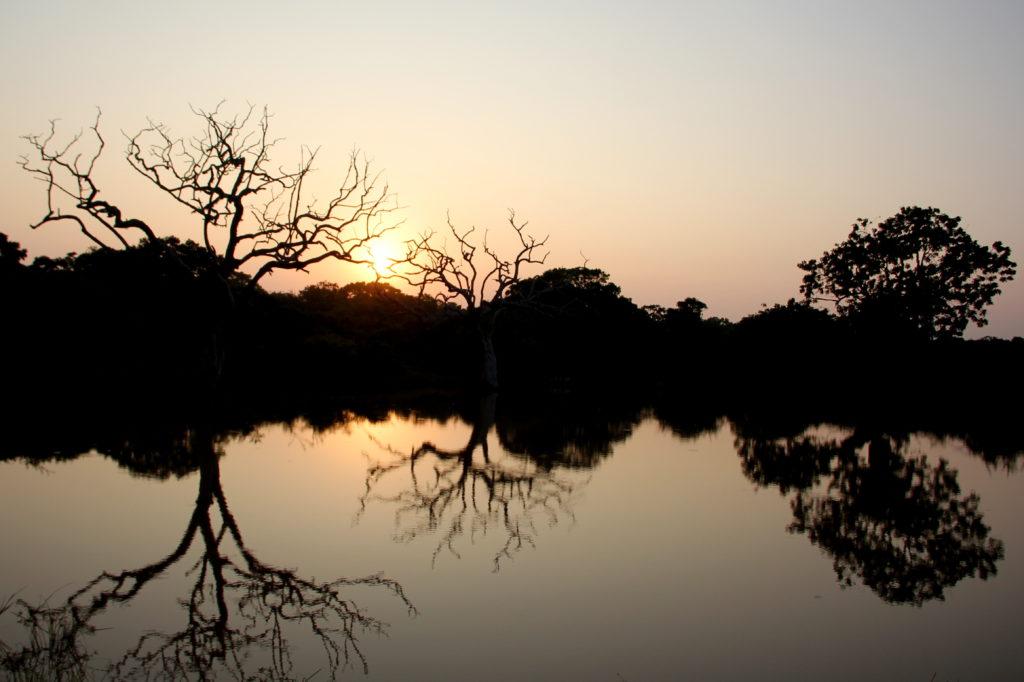 Sri Lanka Yala NP Sonnenuntergang