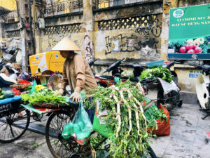 Vietnam Hanoi Gemüsefahhrad