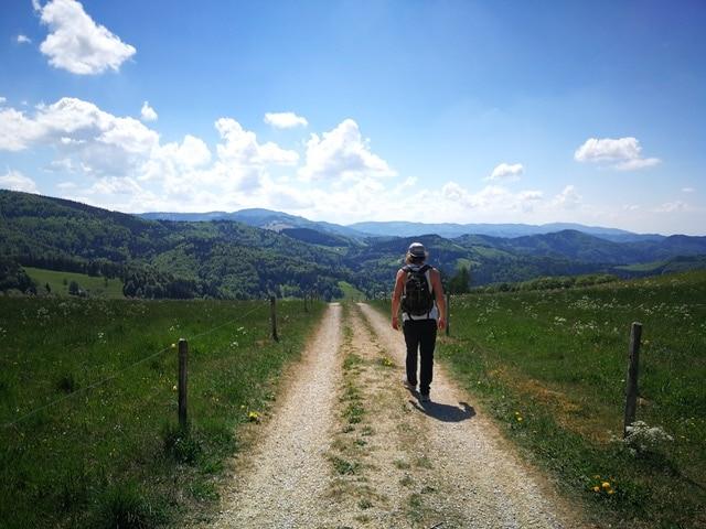 Schwarwald Wanderung