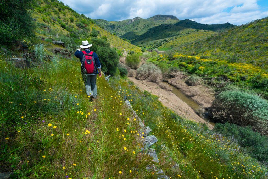 Portugal Coa Valley Natur
