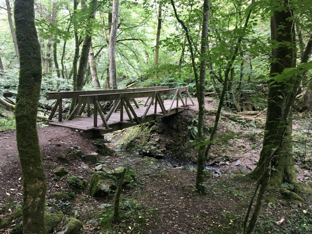Mosel kleine Holzbrücke