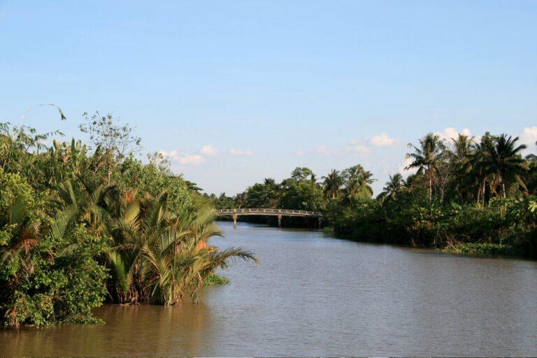 Mekong Delta Brücke