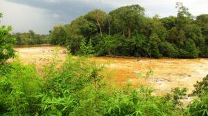 Cat Tien Nationalpark Fluss