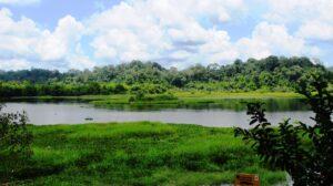 Cat Tien Nationalpark Flussaussicht